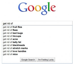 Get Rid of Searches on Google